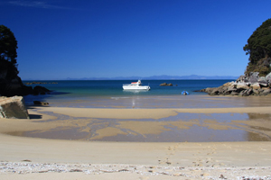 Abel Tasman National Park - Private Charter Boat cruising